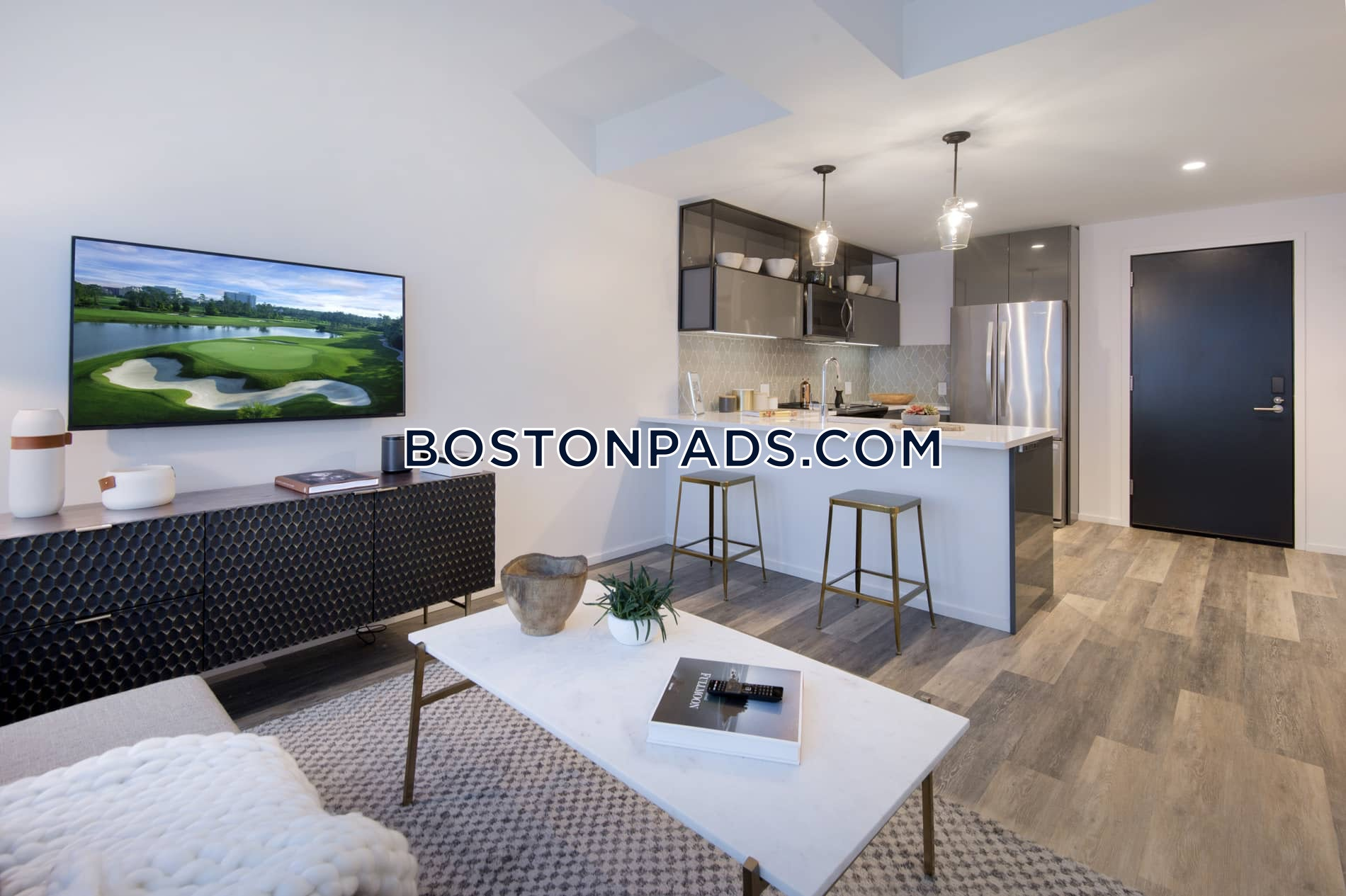 Pet Friendly Apartments South End Apartment For Rent 3 Bedrooms 2 5 Baths Boston 6 099