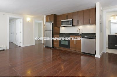 South End Stunning 4 Beds 2 Baths Available 9/1/2020! Located on East Springfield St Boston - $4,200
