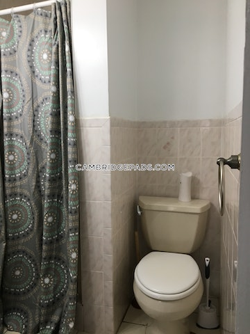 2 Beds 1 Bath - Cambridge - Inman Square $1,999